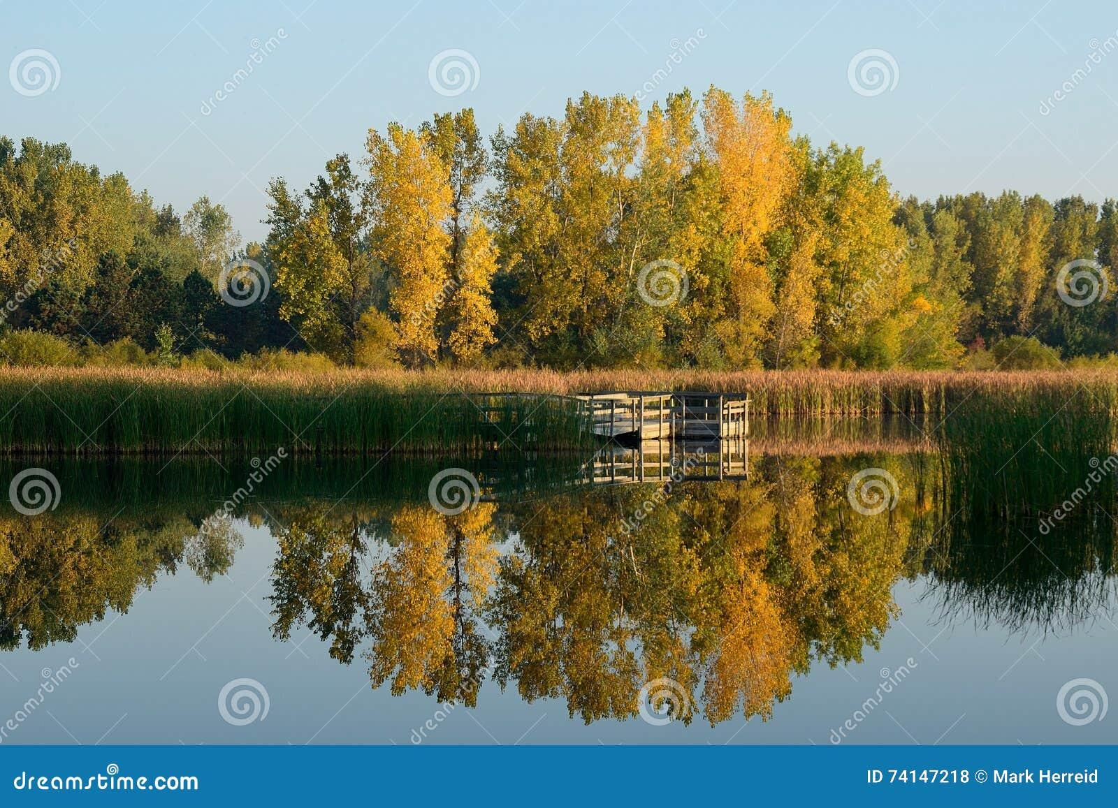 Autumn Colors Reflected su un lago