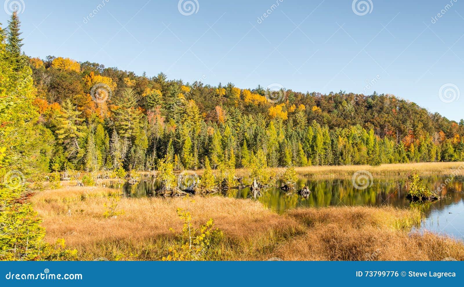 Autumn Colors, ressorts d Iargo, chemin détourné scénique d AuSable, MI