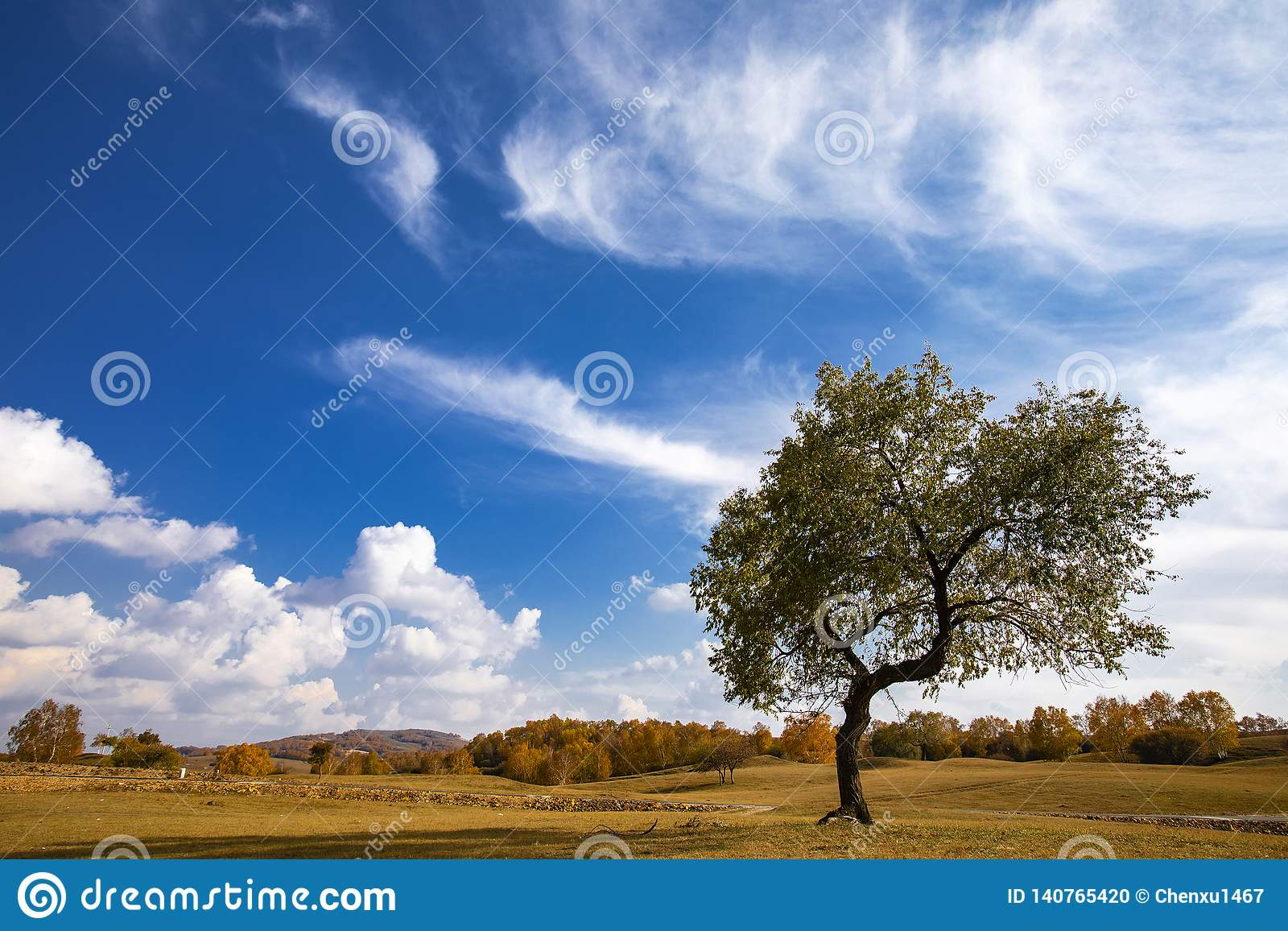 Autumn colors under the blue sky and white clouds