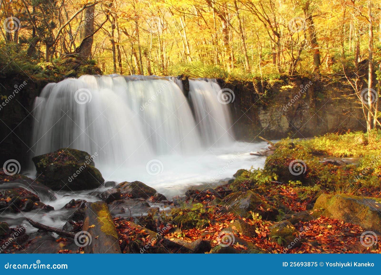 Autumn Colors von Oirase-Fluss