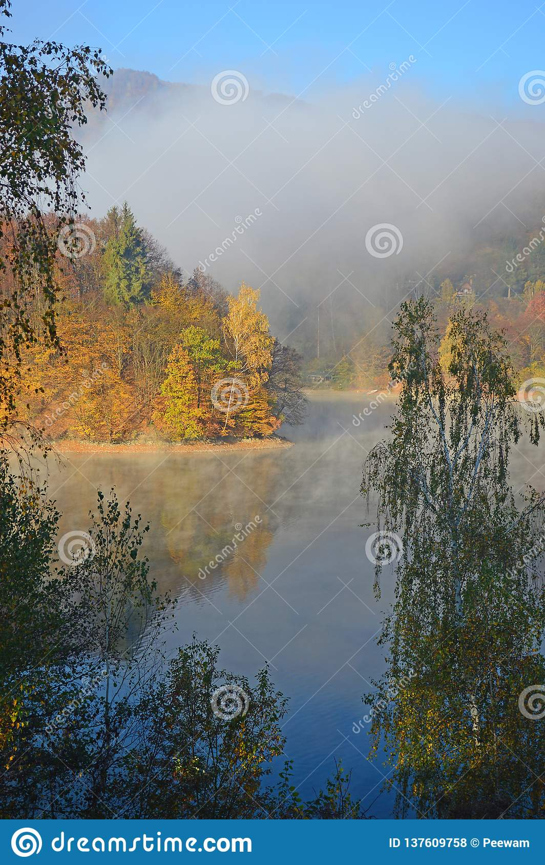 Autumn Colours - dimmig morgon