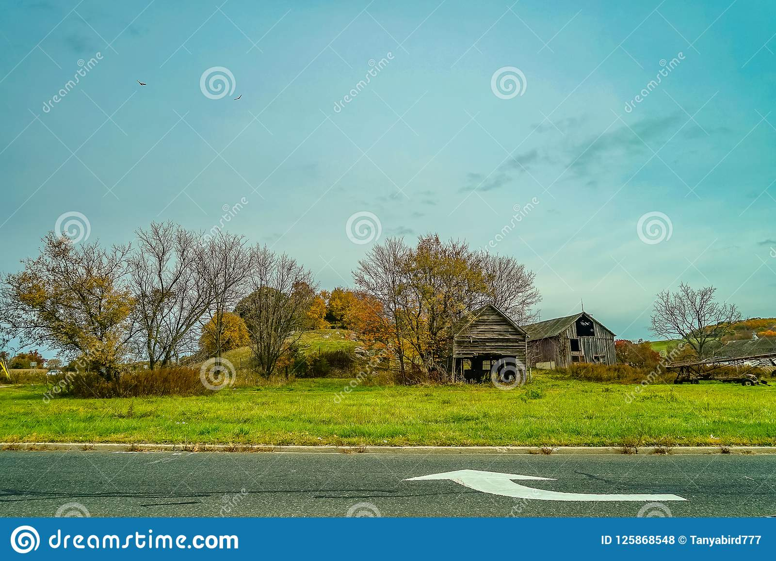 Autumn Country Road, outubro, New-jersey EUA