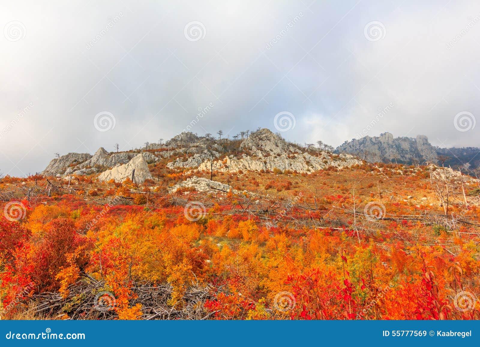 Autumn Crimea