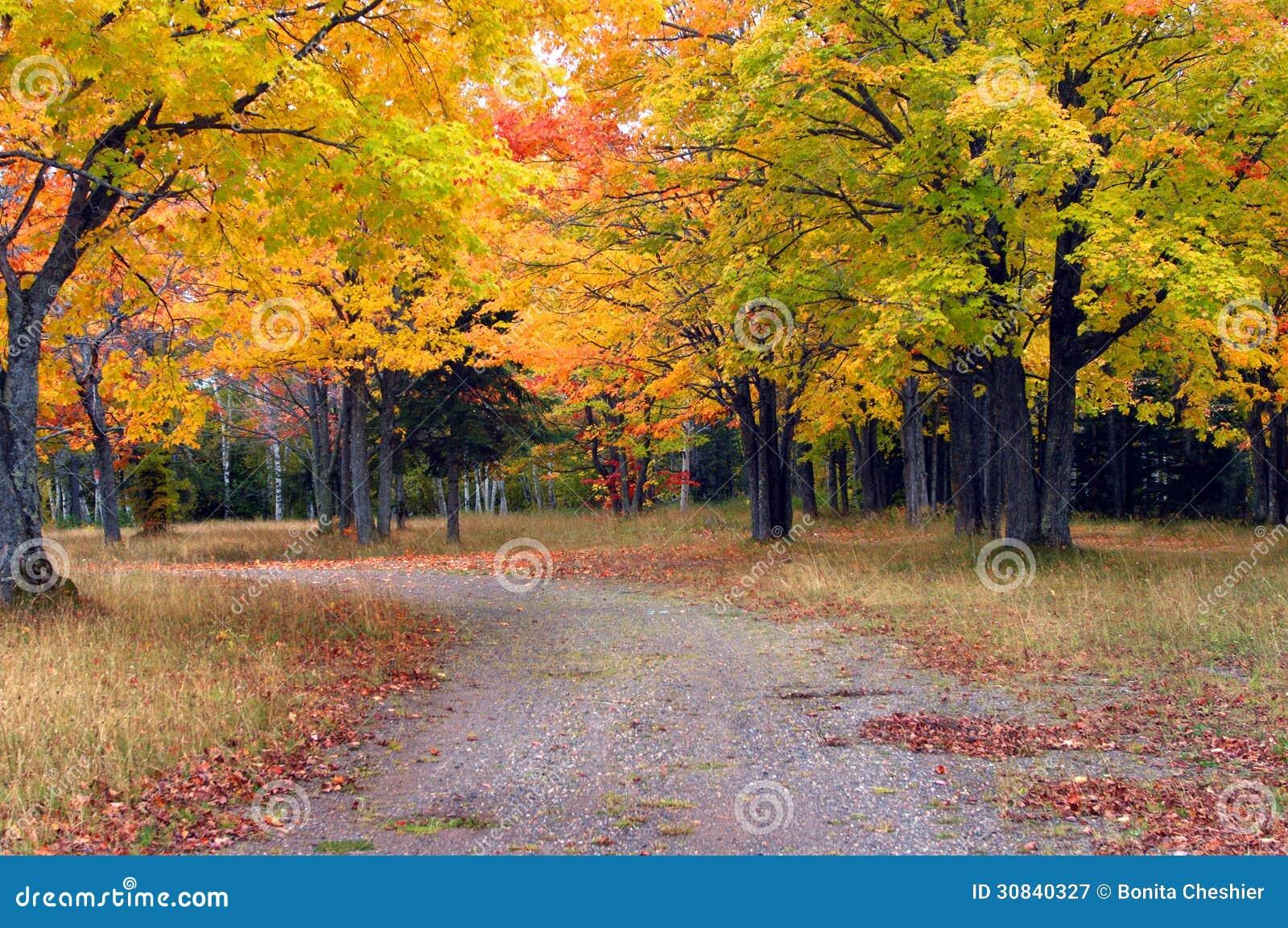 Royalty-Free Stock Photo & Autumn Day in Michigan stock image. Image of lane peninsula ...