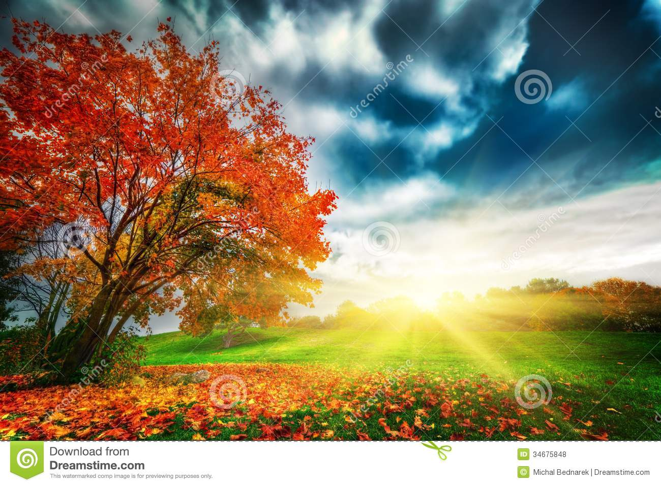 Autumn, Fall Landscape In Park Royalty Free Stock Photos - Image ...