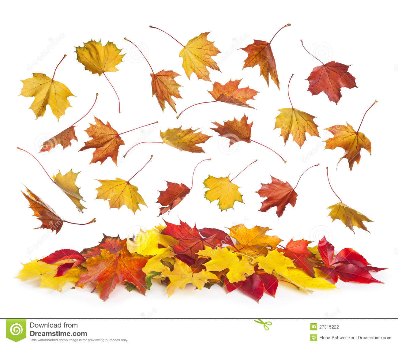 autumn falling leaves stock photo image of group brown 27315222