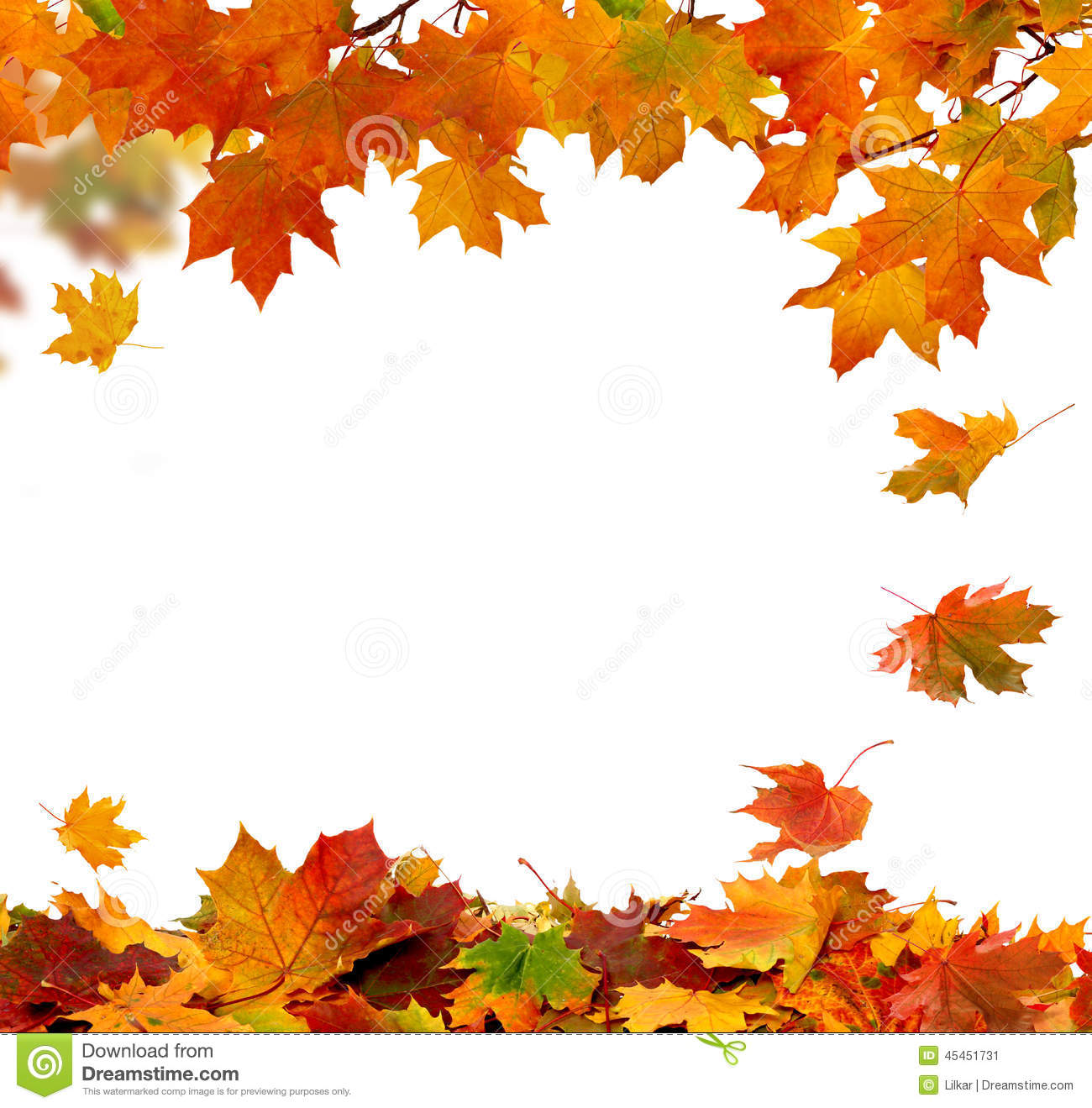 fall vector border