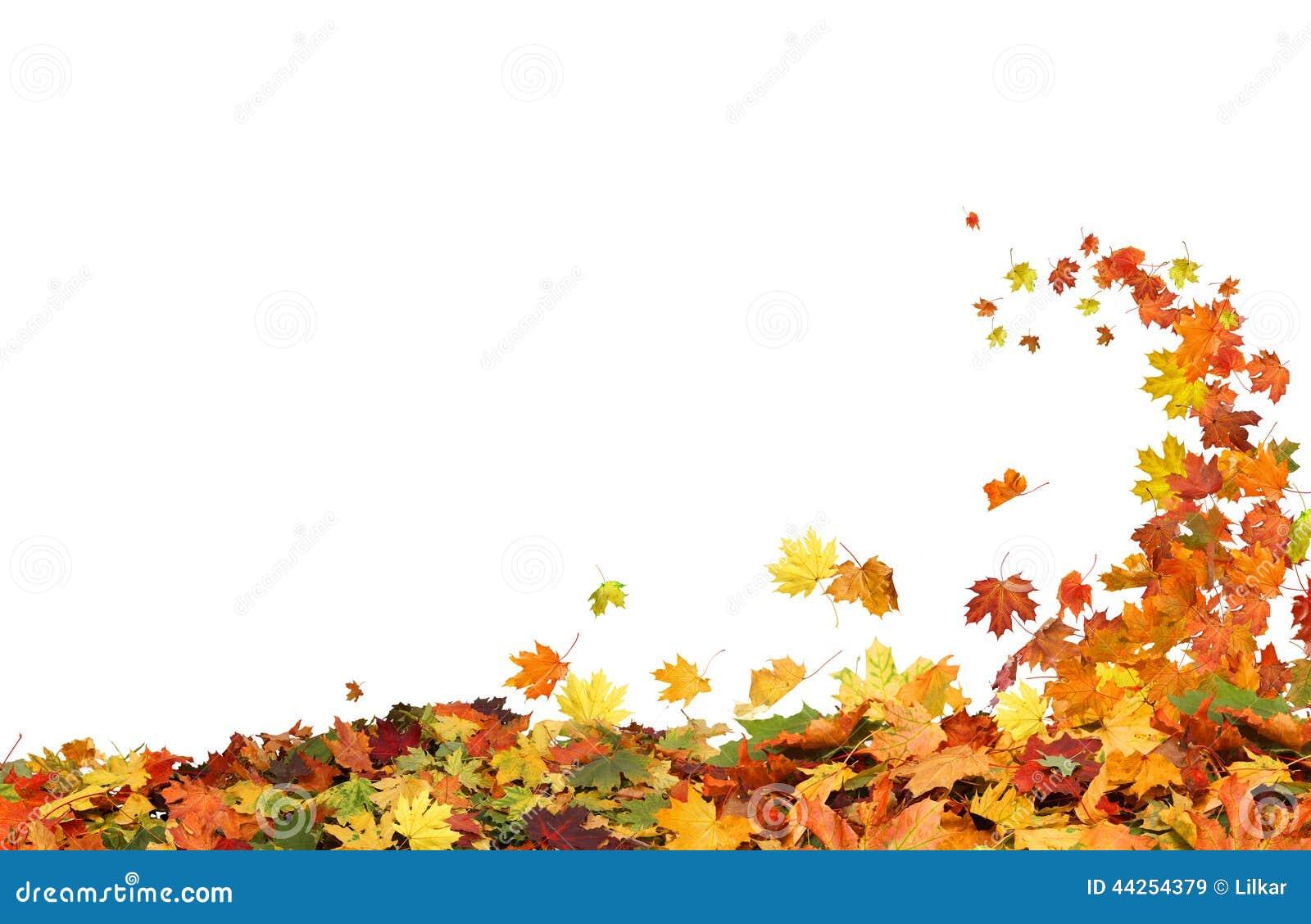 Autumn Falling Leaves Stock Image Image Of Falling