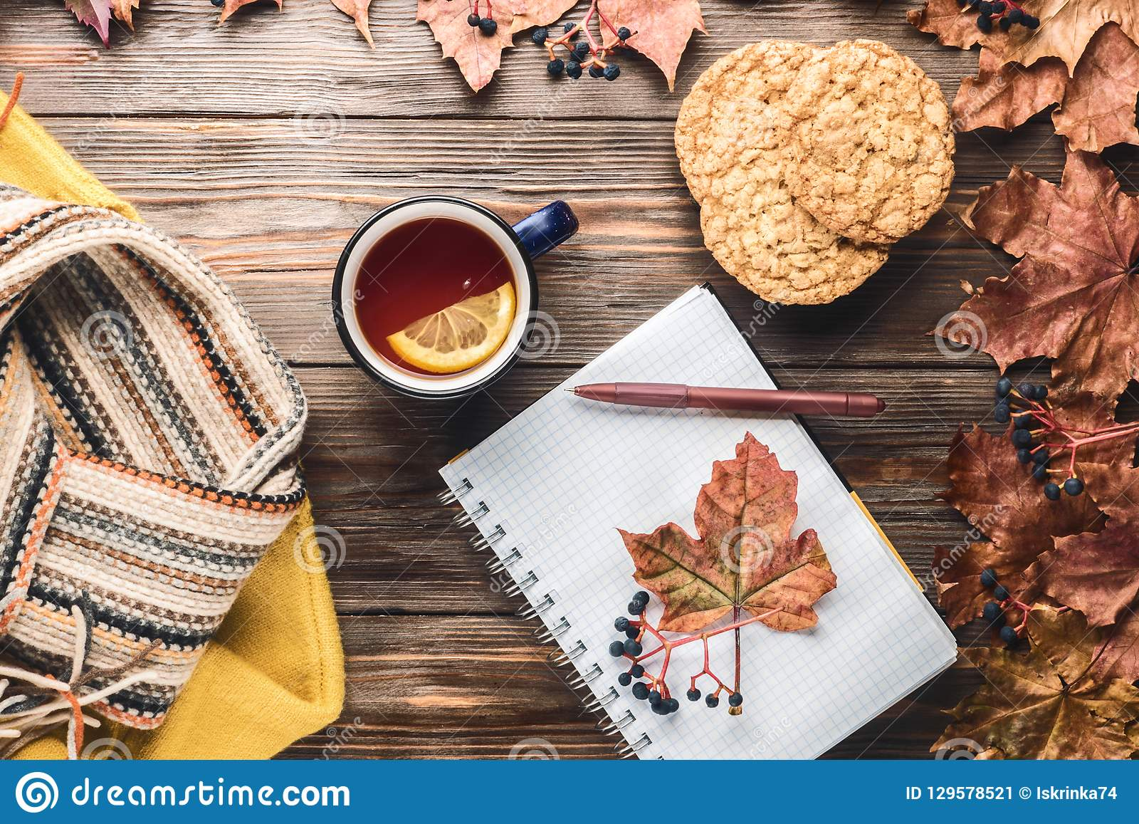 Autumn fashion seasonal concept sweater cardigan Scandinavian knitted scarf cup hot black tea