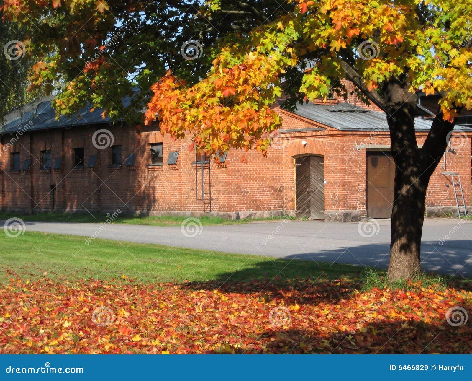 Autumn Finlandia