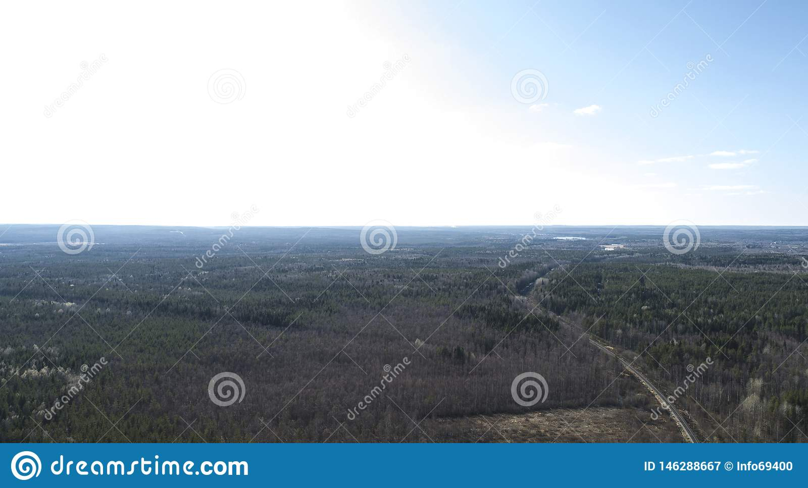 Autumn forest aerial drone view in spring