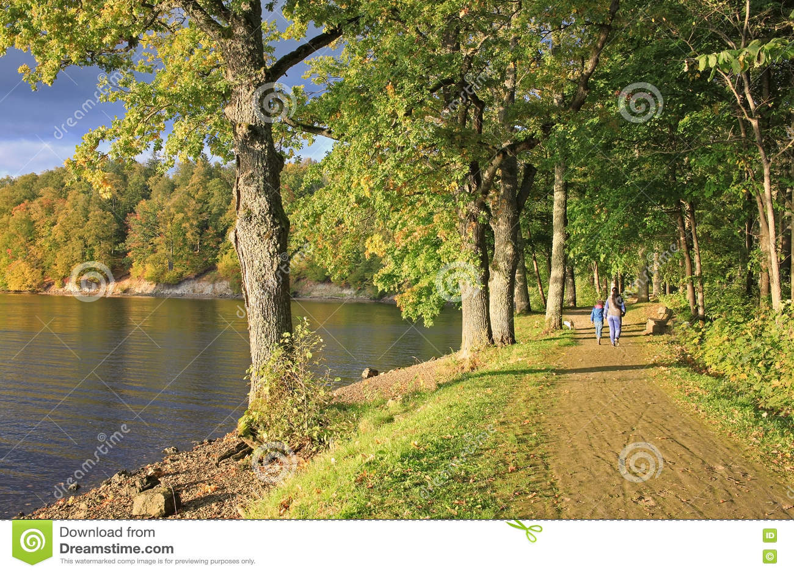 latvian autumn forest river - photo #2