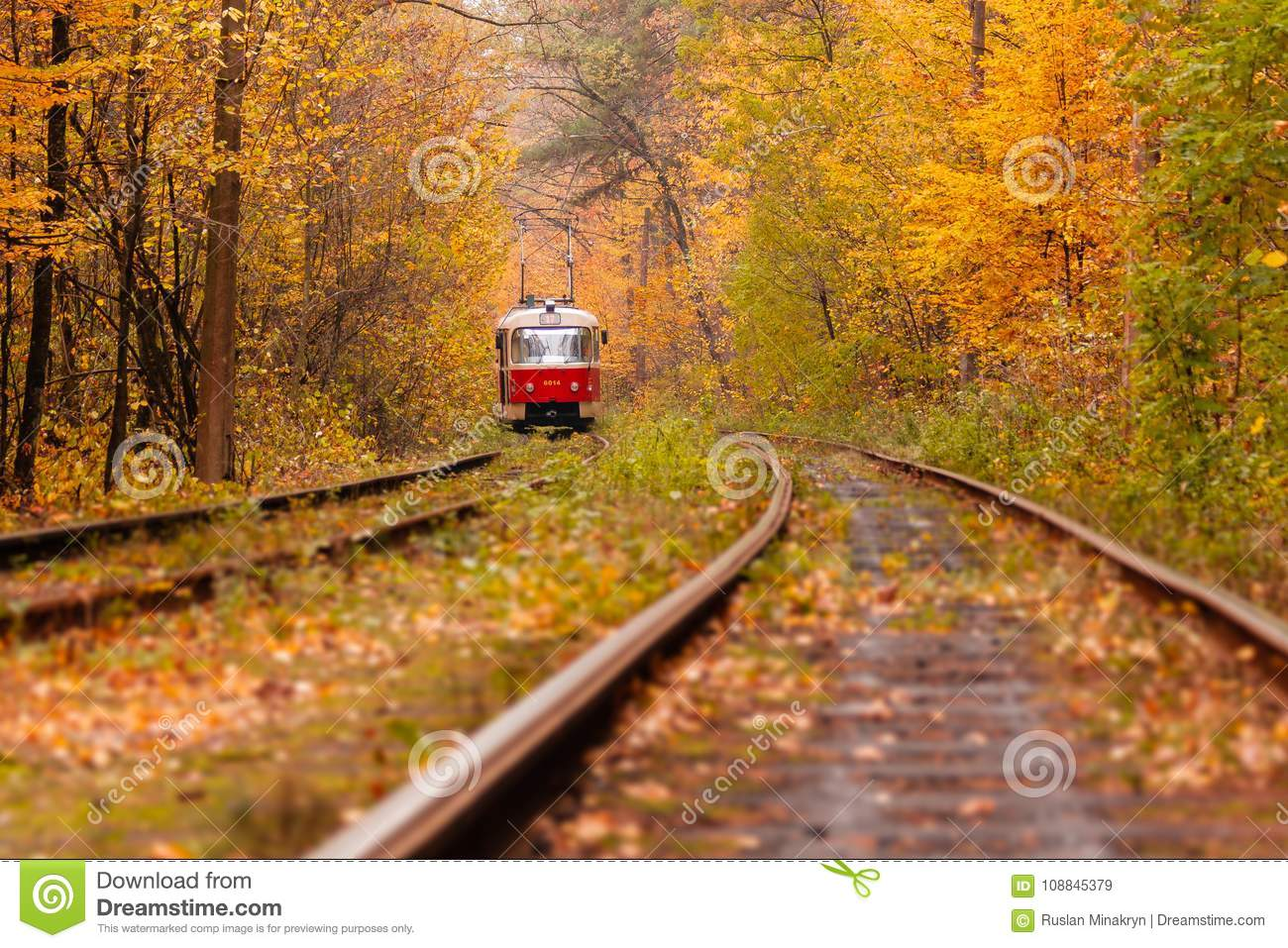 Autumn forest among which goes a strange tram