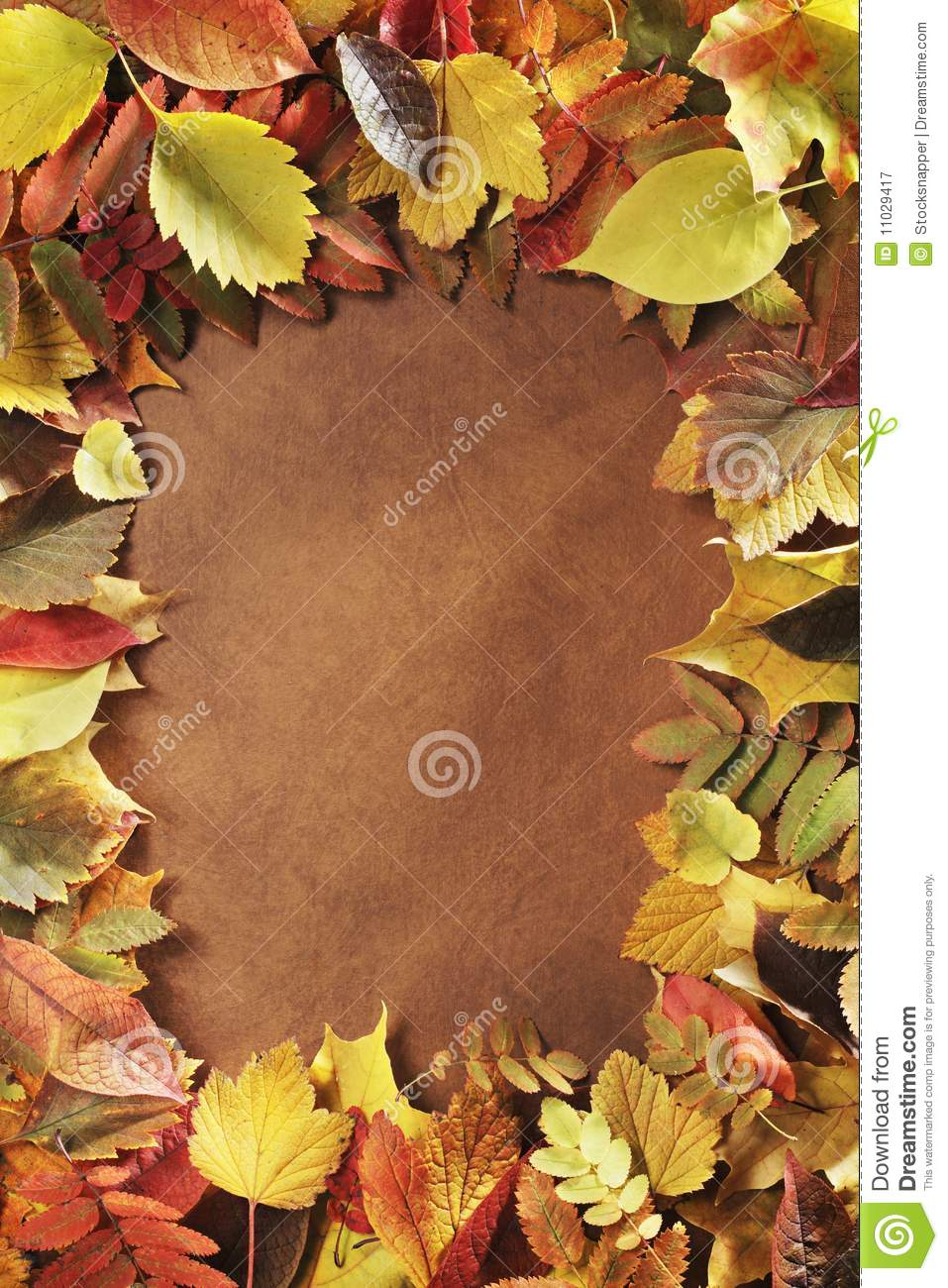Download Autumn frame stock image. Image of rectangle, yellow - 11029417