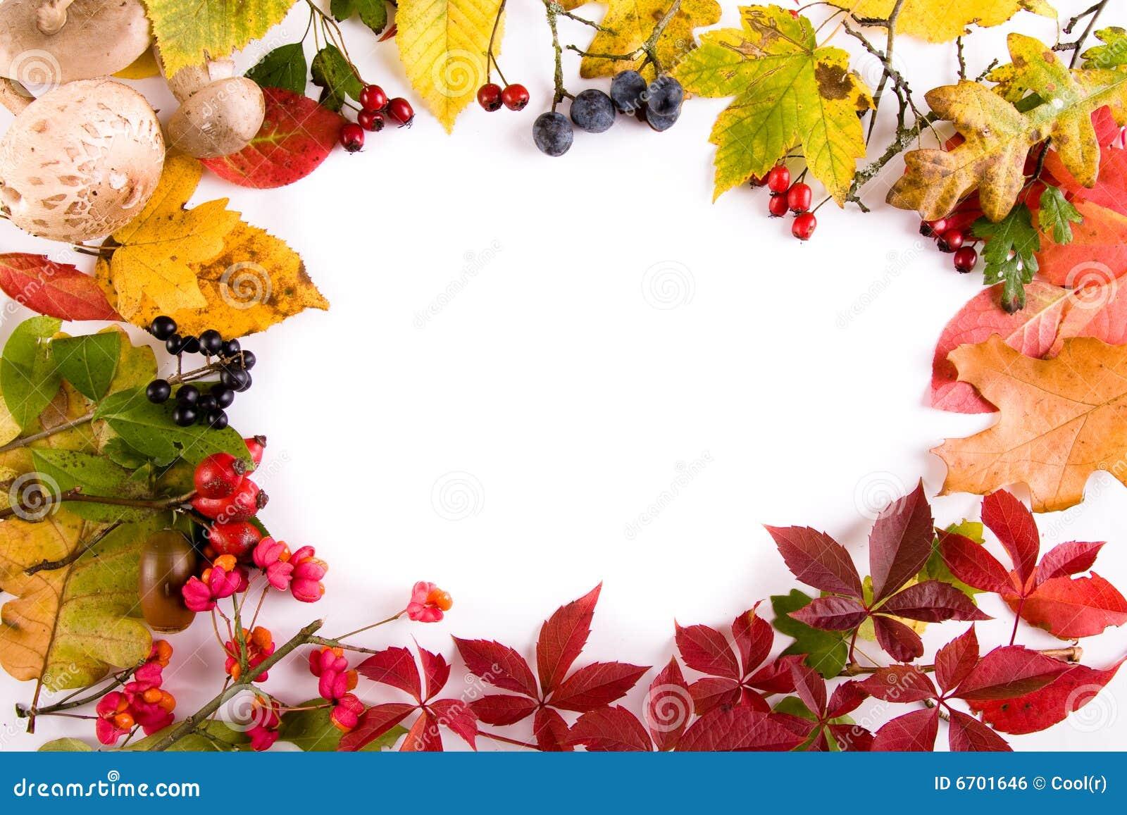 Autumn Frame... Harvest Backgrounds