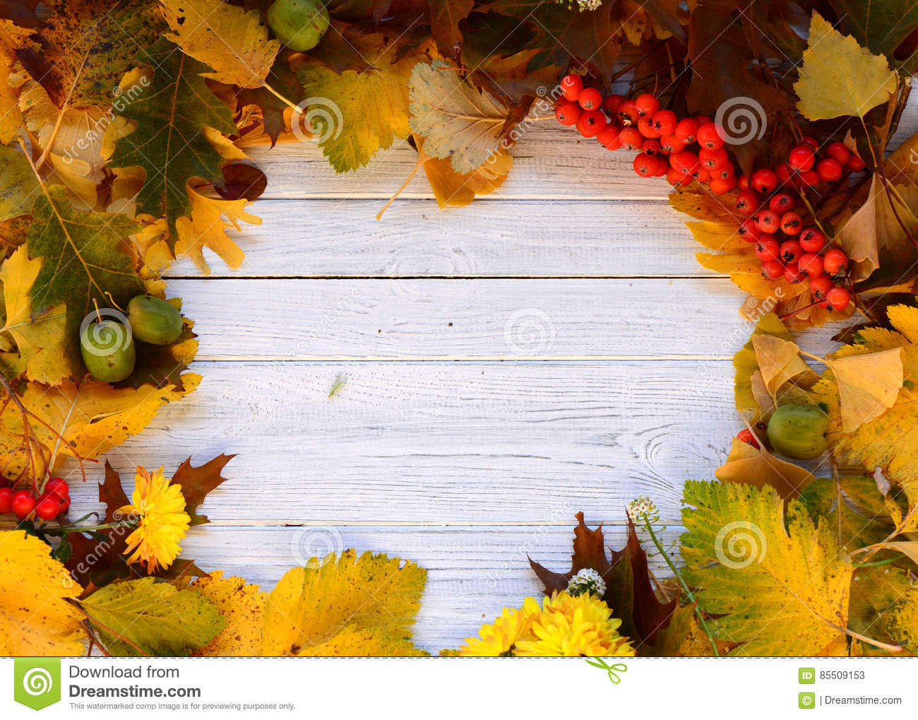 Download Autumn frame stock image. Image of yellow, autumn, background - 85509153