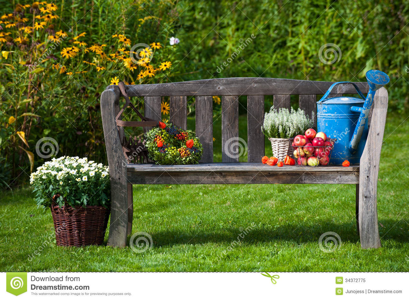 Autumn garden stock image. Image of asters, flower, apples ...