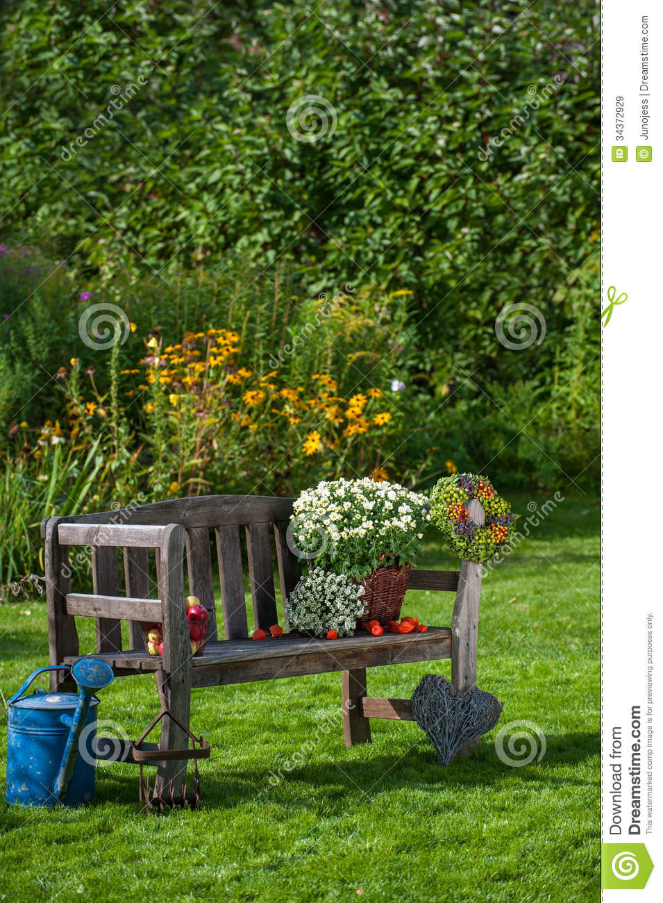 Autumn Garden Stock Image Image Of Asters Autumnal 34372929
