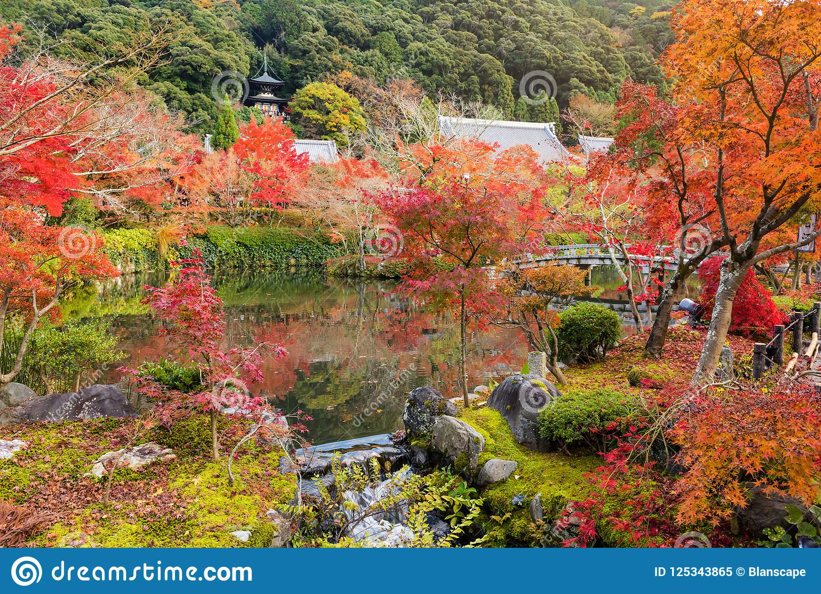 Autumn Garden At Eikando Temple, Kyoto Stock Image - Image of ...