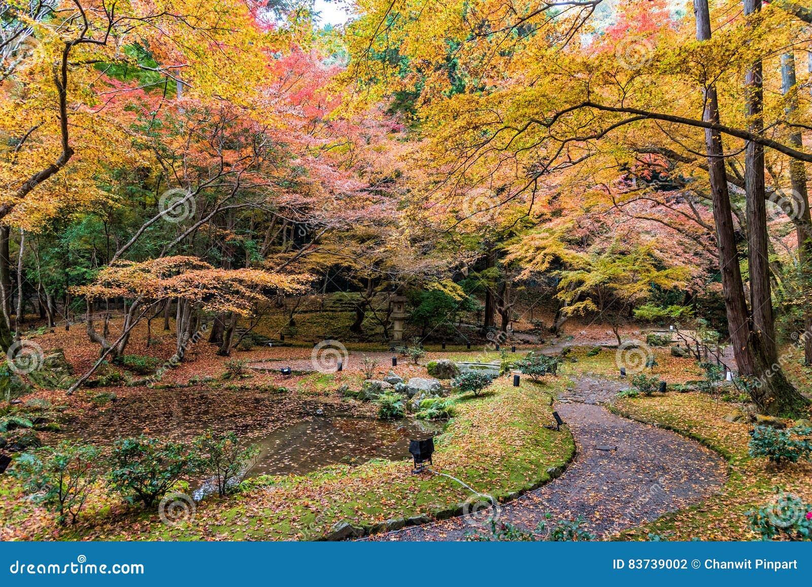 Autumn Garden And Forest In Daigoji Temple. Kyoto, Japan Stock Photo ...
