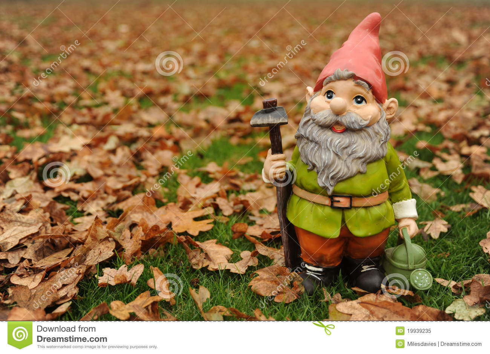 Autumn Garden Gnome Stock Photos - Download 95 Images