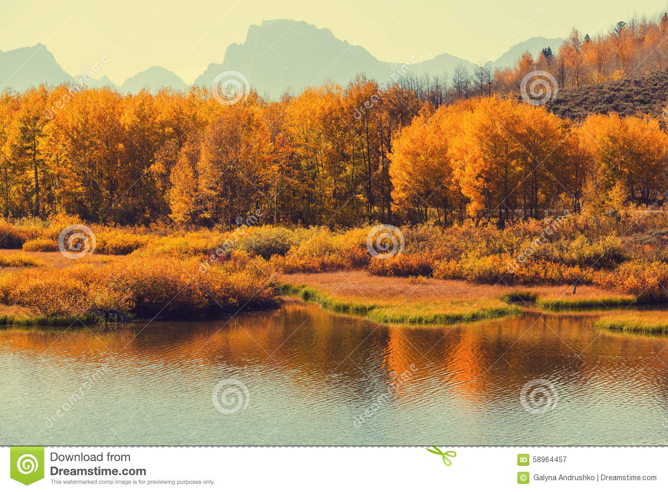 Autumn In Grand Teton Stock Photo - Image: 58964457