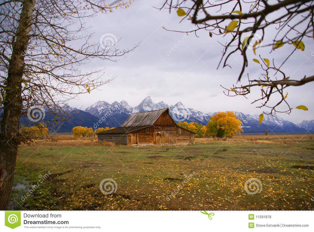 Autumn, Grand Tetons and old western farm buildings Mormon Row, Grand ...