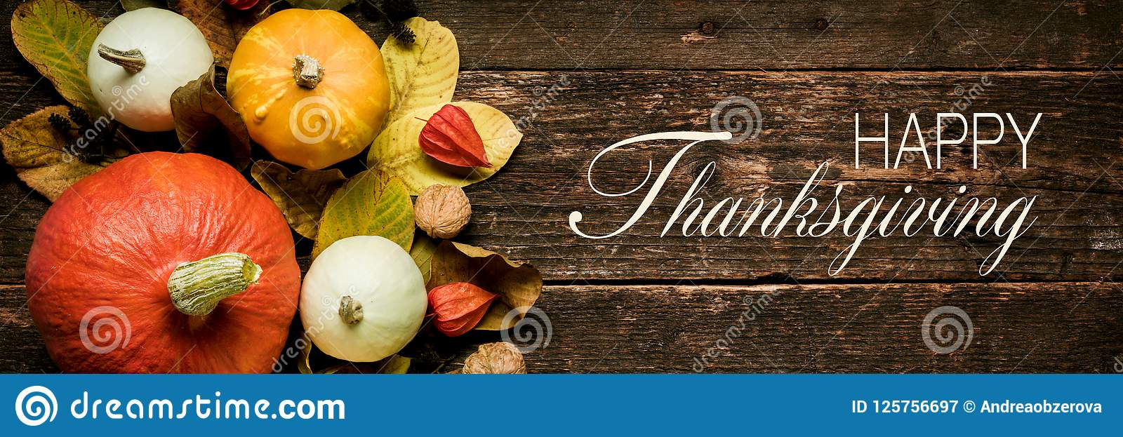 Autumn Harvest and Holiday still life. Happy Thanksgiving Banner. Selection of various pumpkins on dark wooden background.