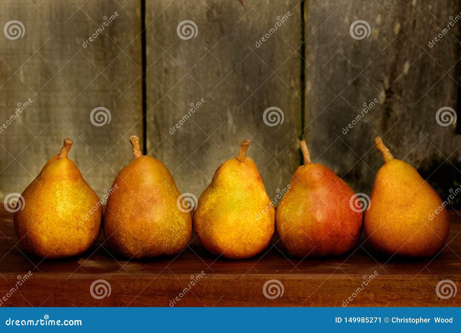 Autumn Harvest Pears Colourful
