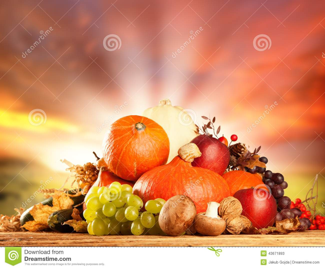 Autumn Harvested Fruit And Vegetable On Wood Stock Photo ...
