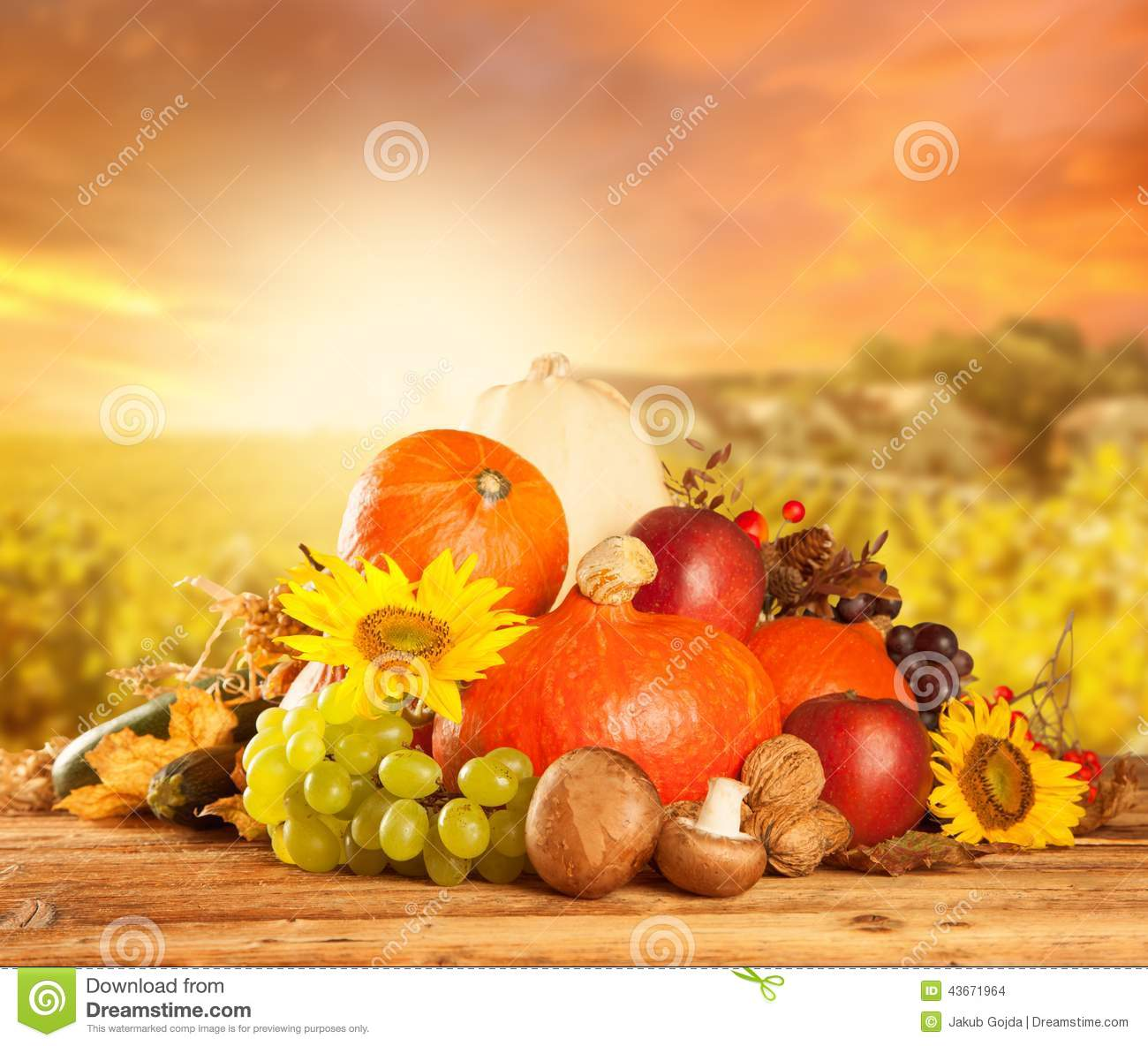 August 2014 Cpo Offers Table Jpg: Autumn Harvested Fruit And Vegetable On Wood Stock Photo