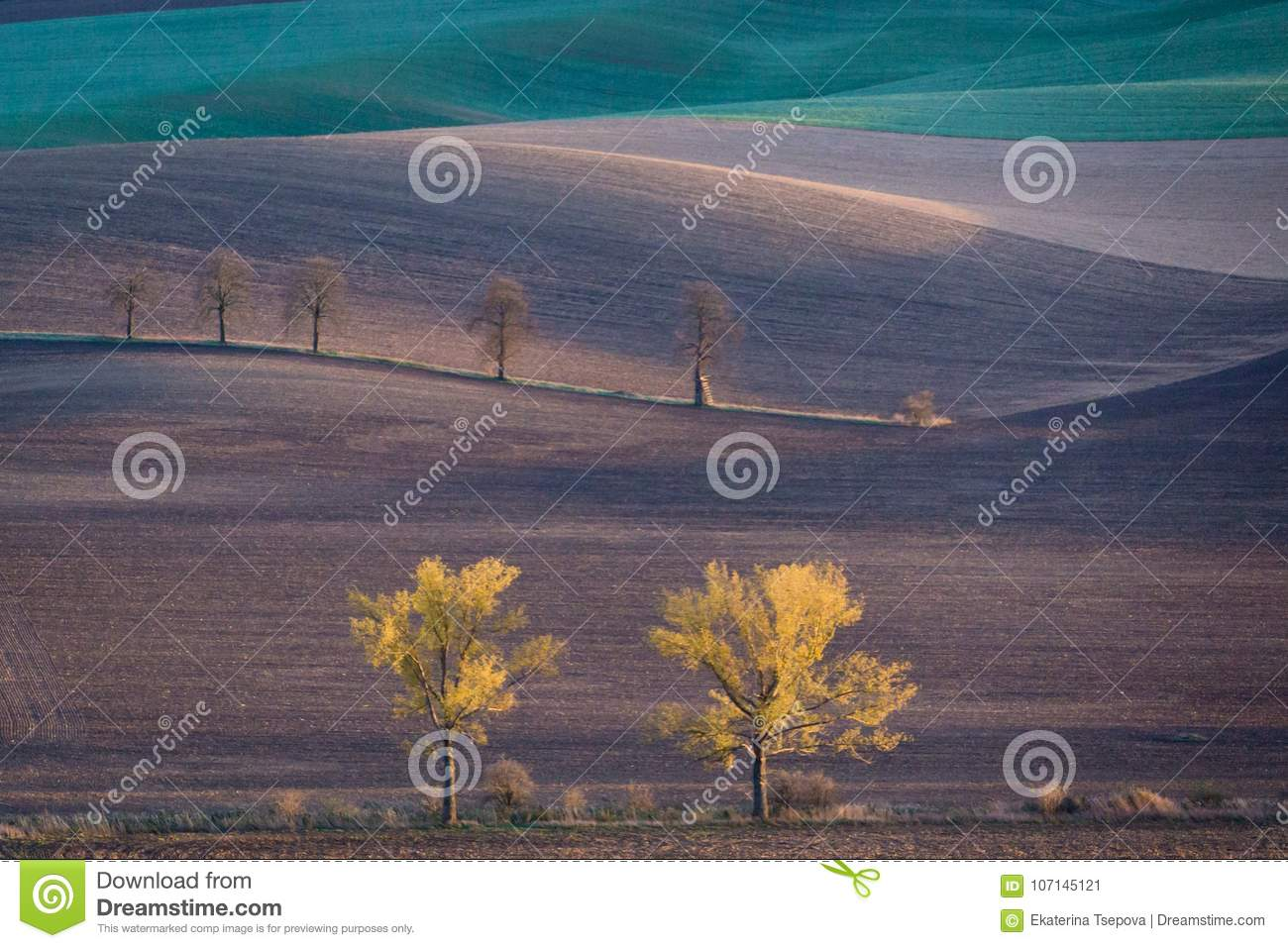Autumn hills of Moravia