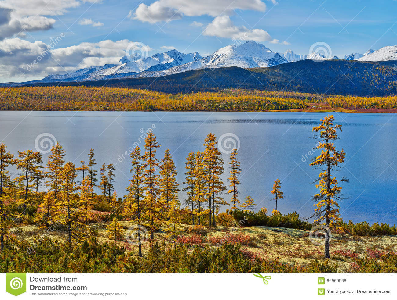 Autumn on Jack London s lake. Mountains in snow