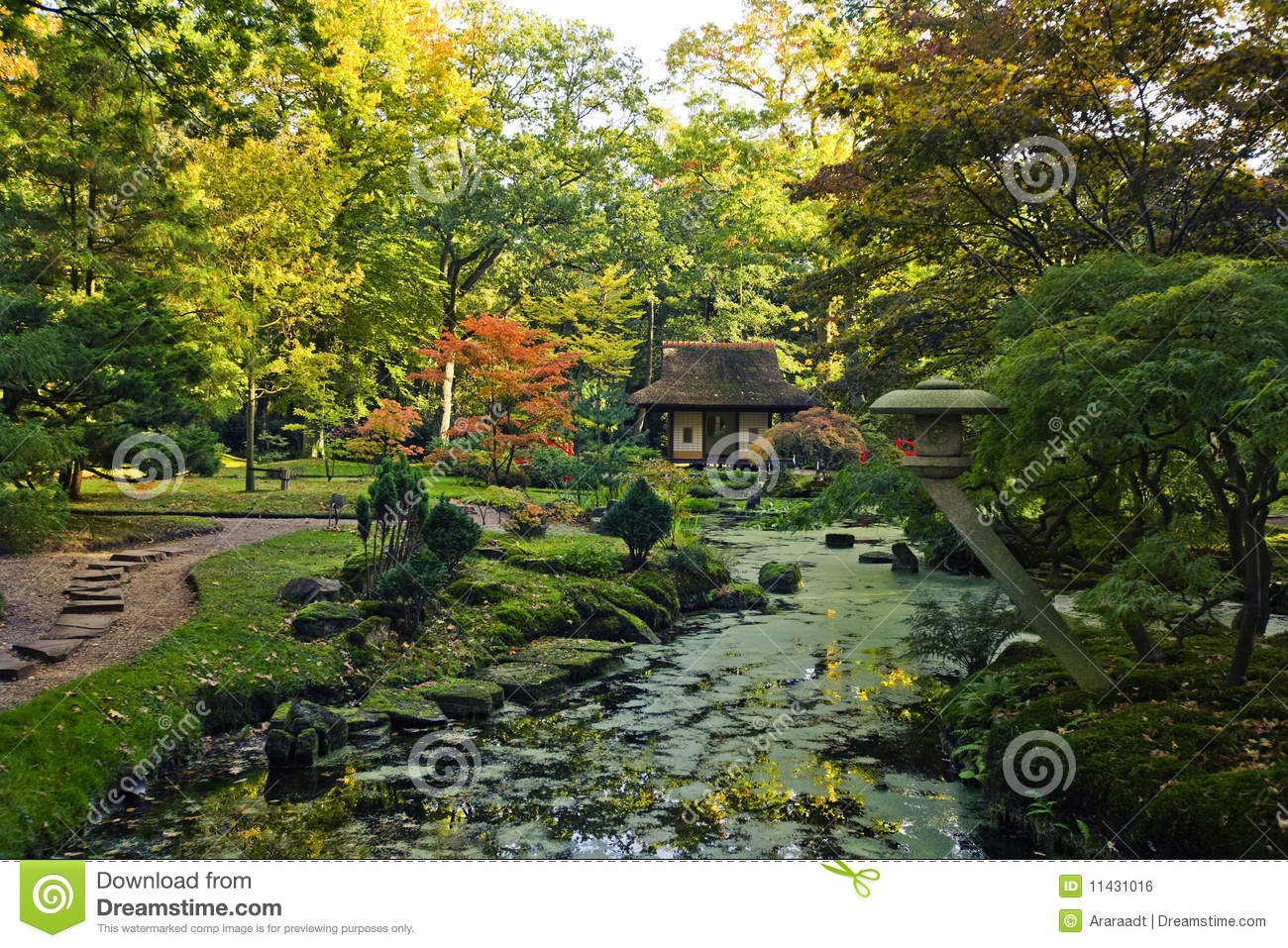 Autumn in japanese garden royalty free stock image image for Japanese garden colors