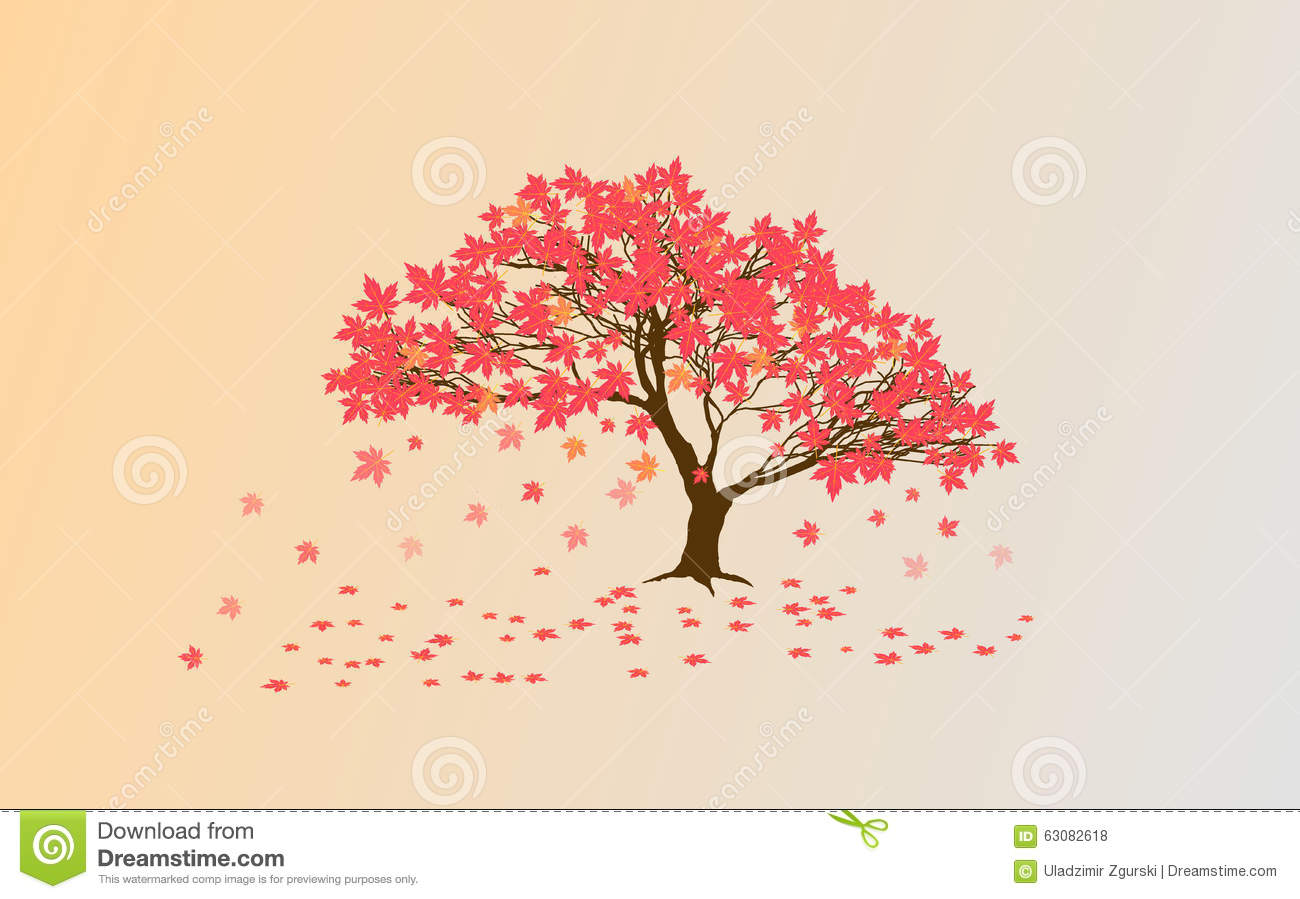 Autumn Japanese Maple Stock Vector Illustration Of Harmony 63082618