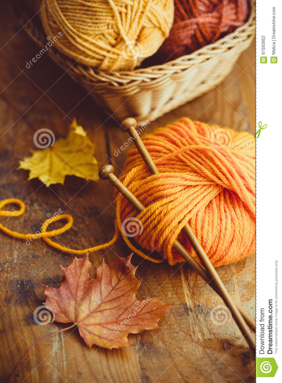 Yarn Knitting : Autumn knitting, knitting needles and yarn in autumn colors.