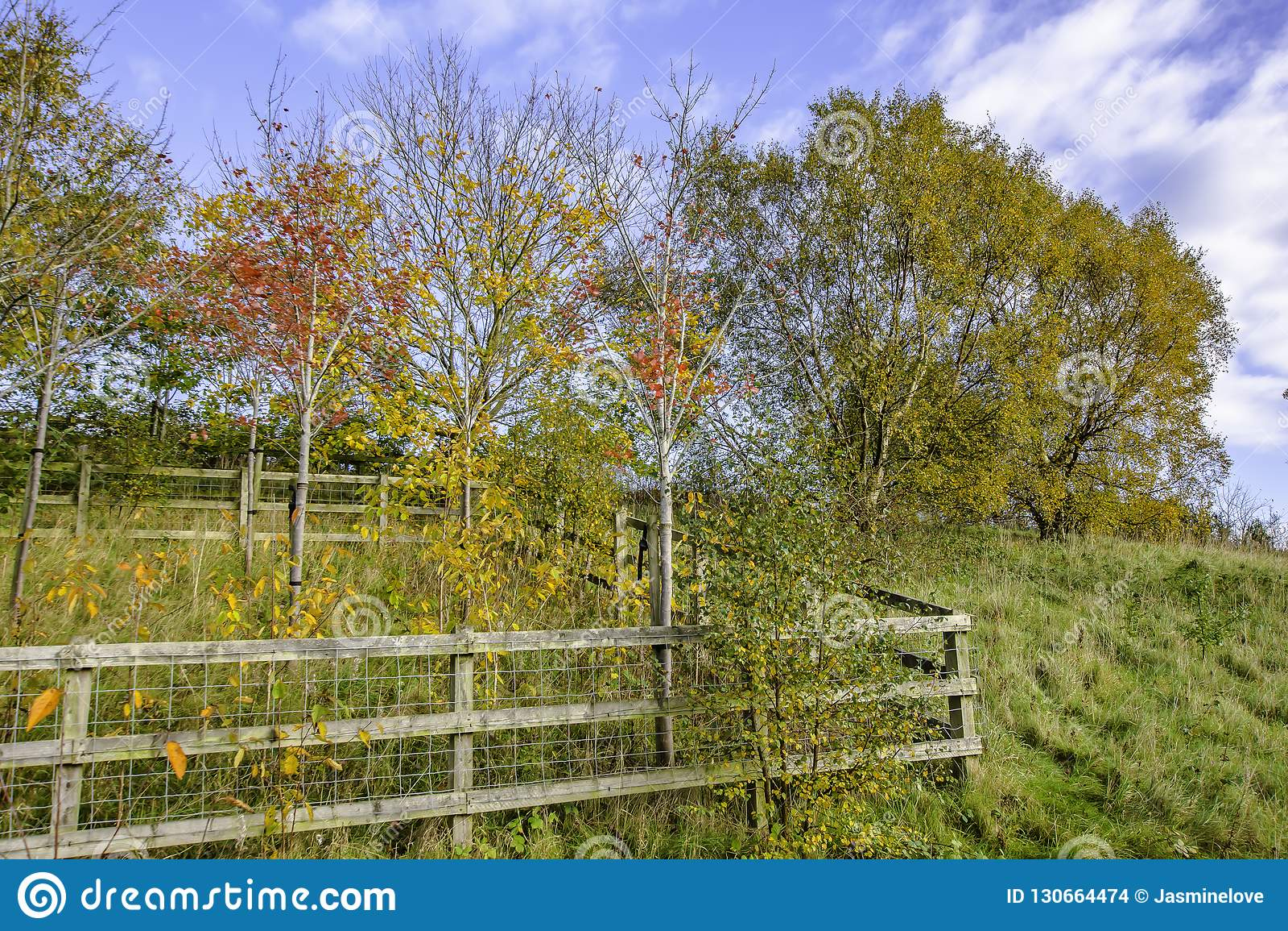 Autumn landscape of british countryside.