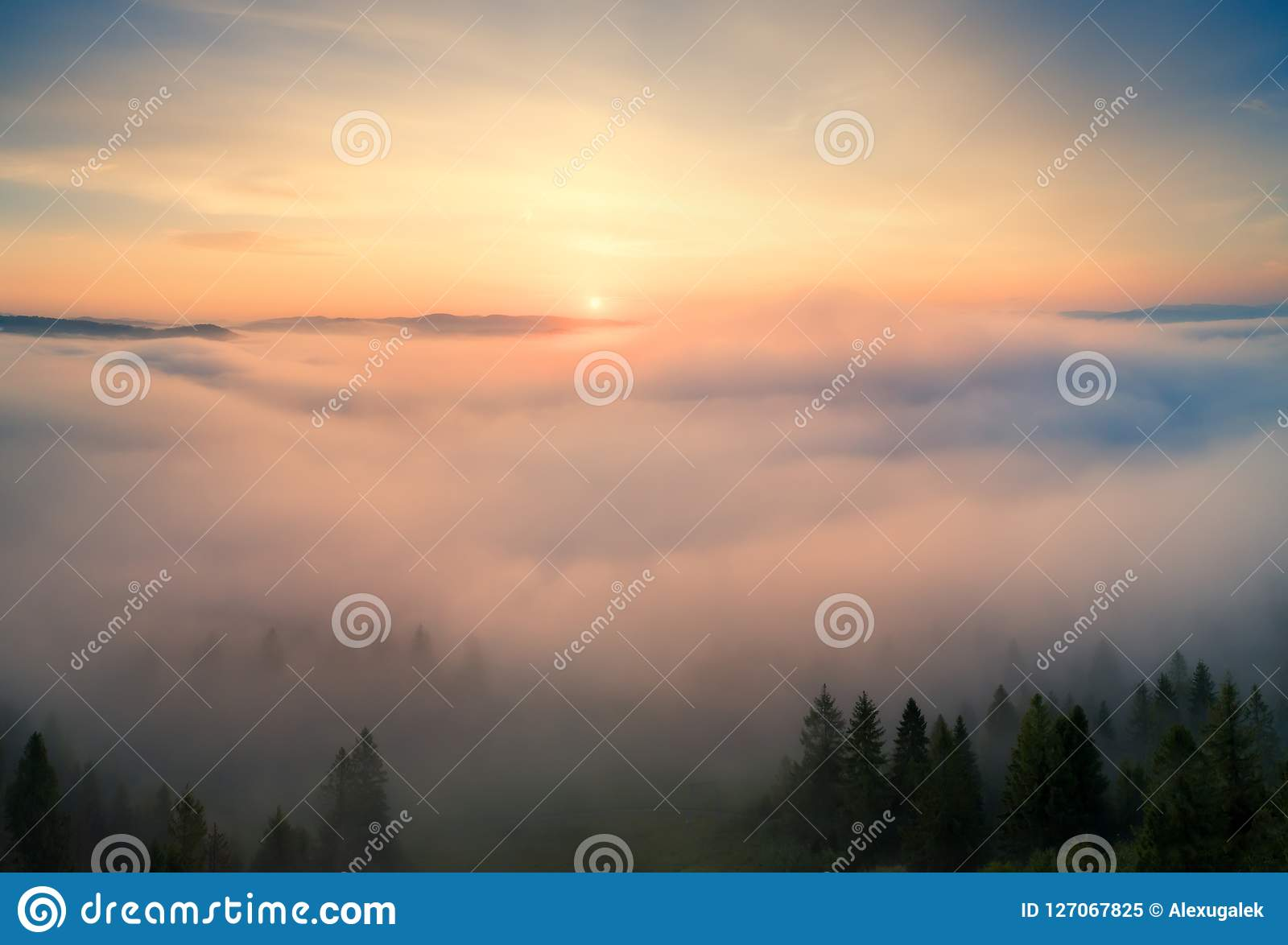 Autumn Landscape Brouillard en montagnes pendant le matin