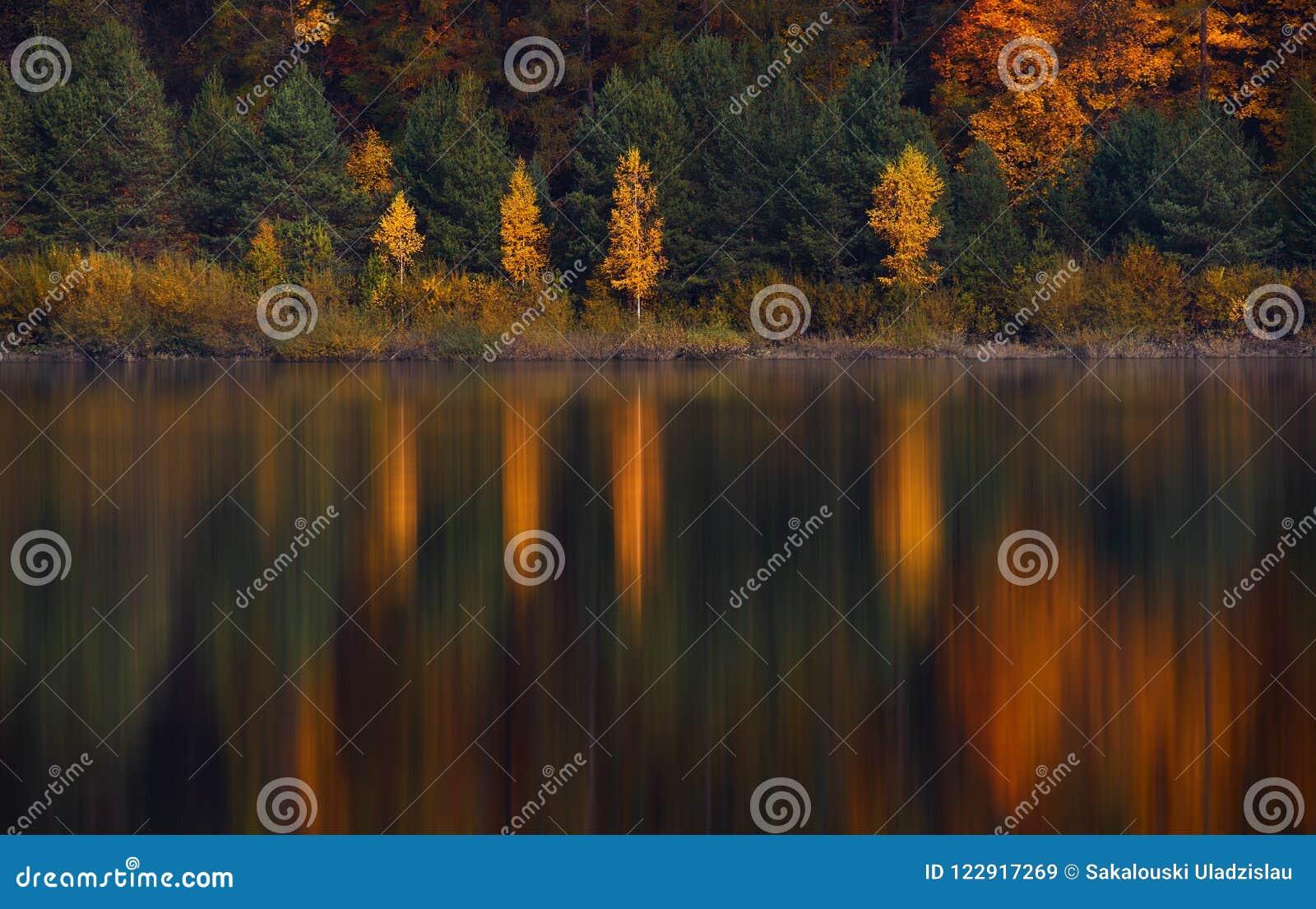 Autumn Landscape With Four Birches mit gelbem Laub und ihre schöne farbige Reflexion im ruhigen Wasser von einem kleinen Mounta