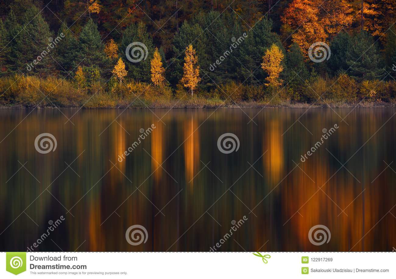 Autumn Landscape With Four Birches With Yellow Foliage And Their Beautiful Colored Reflection In The Still Water Of A Small Mounta