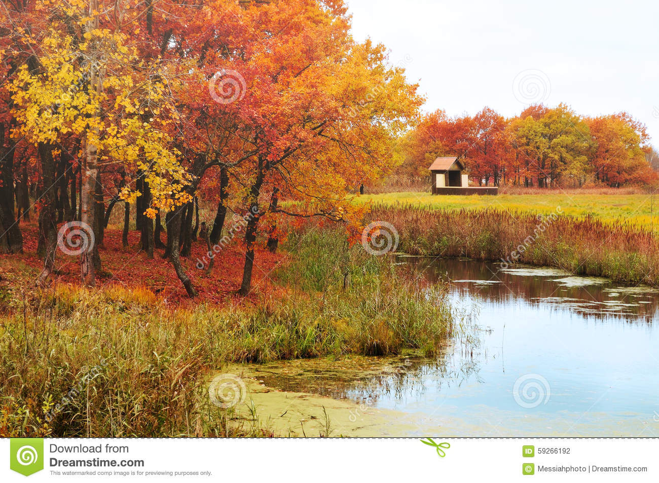 Autumn Landscape A Lonely House In The Woods Near The Lake Stock Image