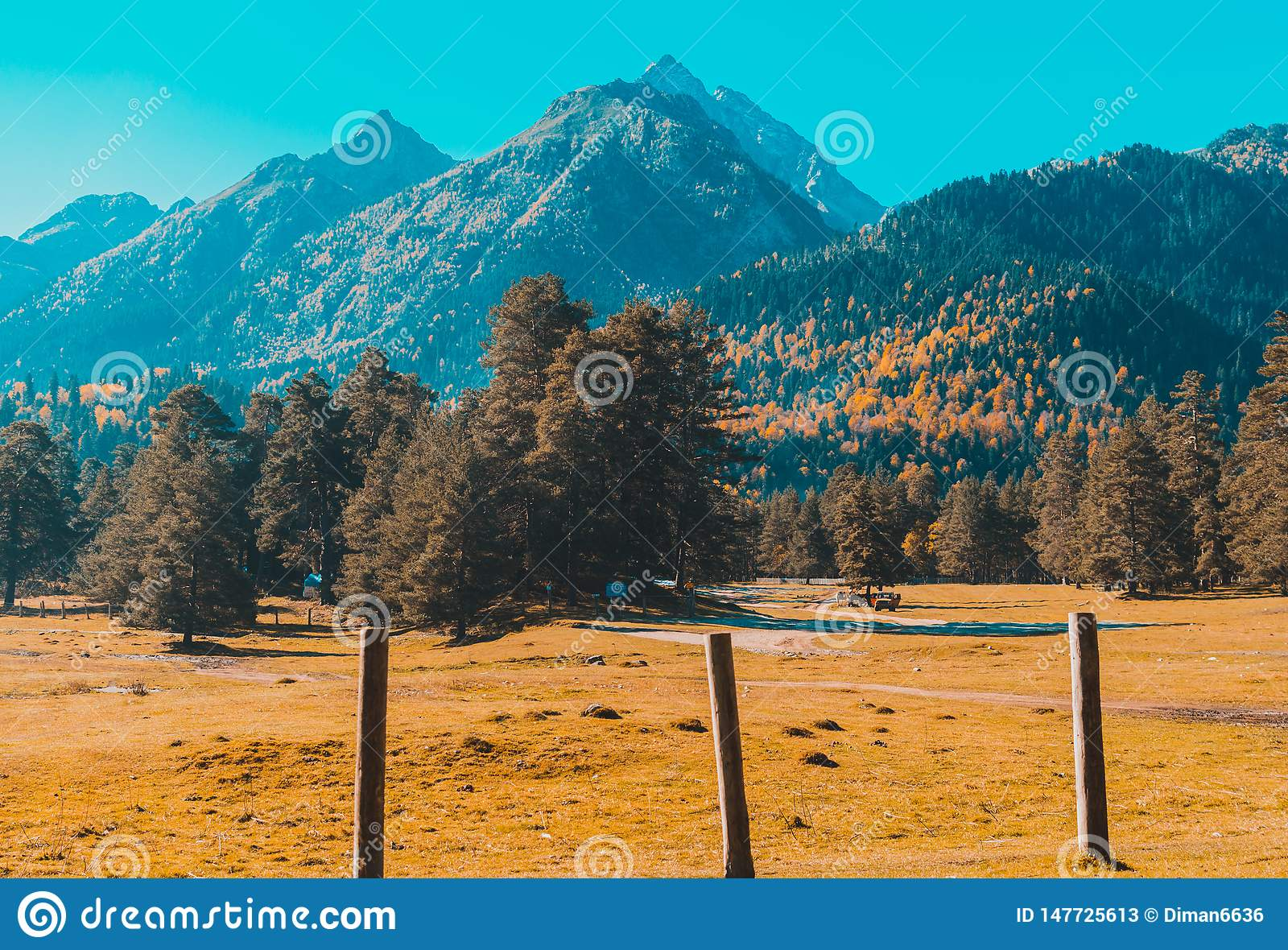 Autumn landscape, trees on the background of mountains, mountains, nature