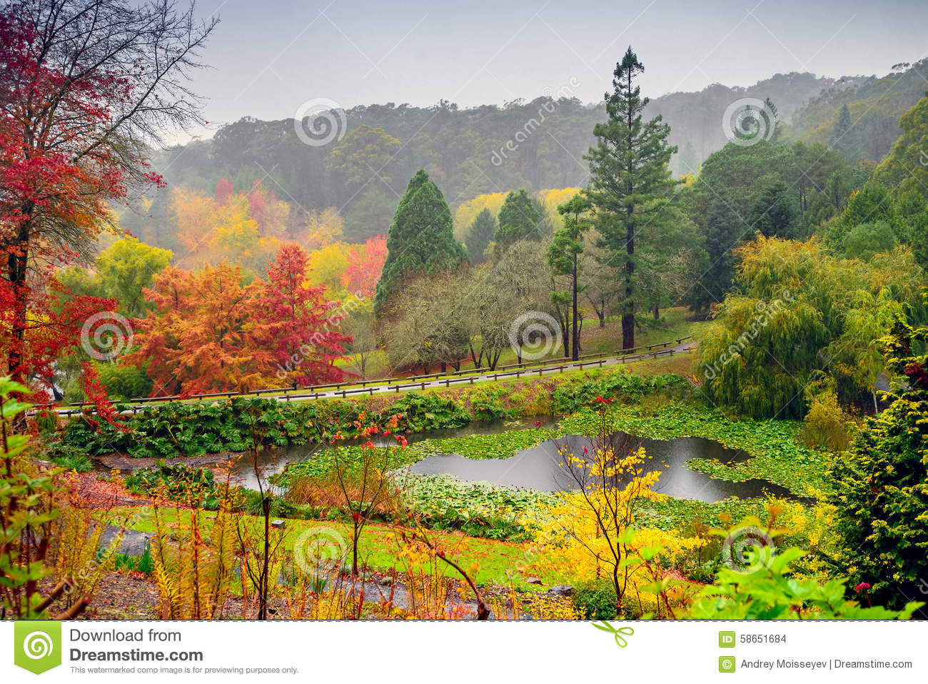 Autumn landscape under the rain stock photo image 58651684 for Adelaide hills landscape