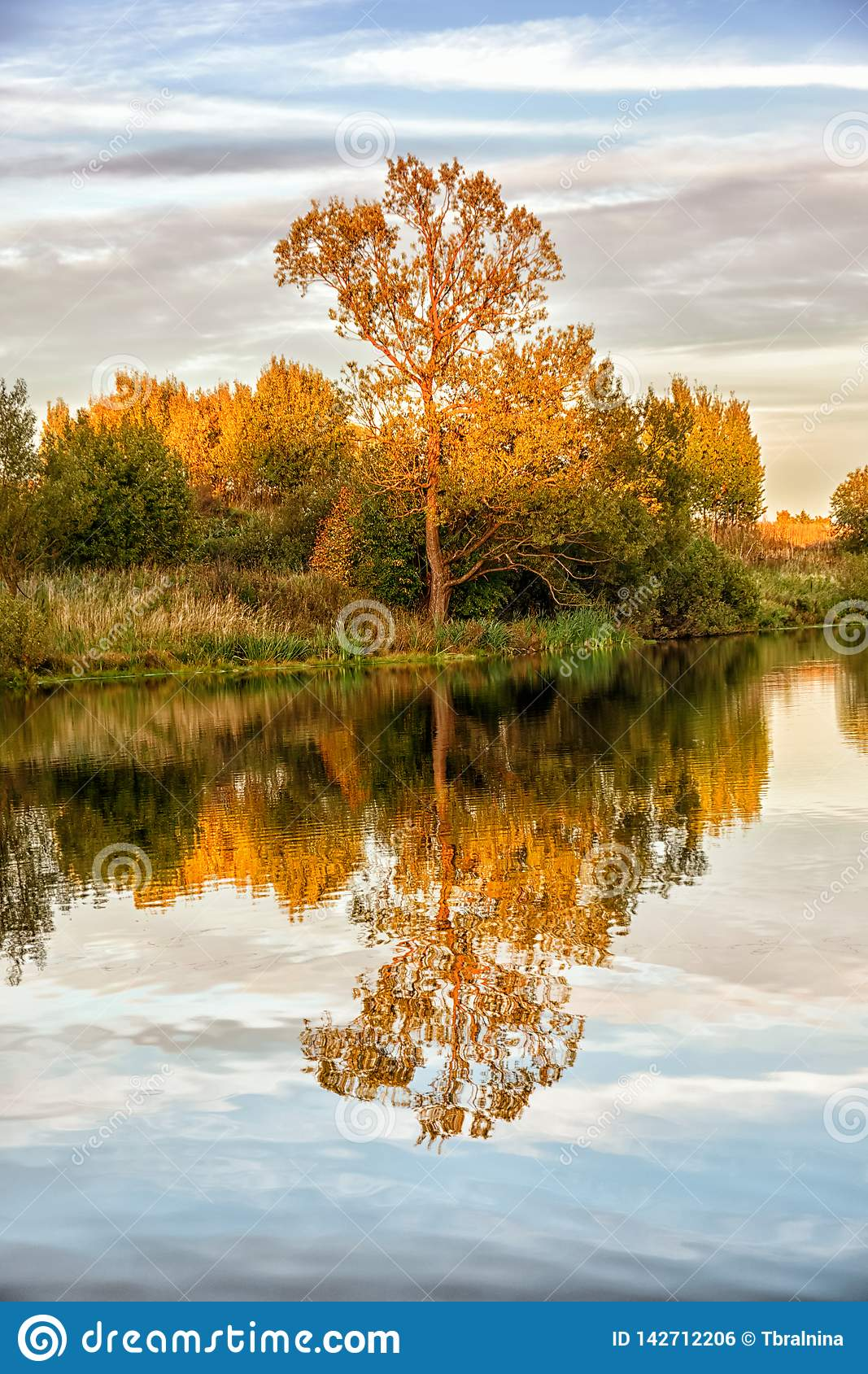 Autumn landscape with water, colorful trees