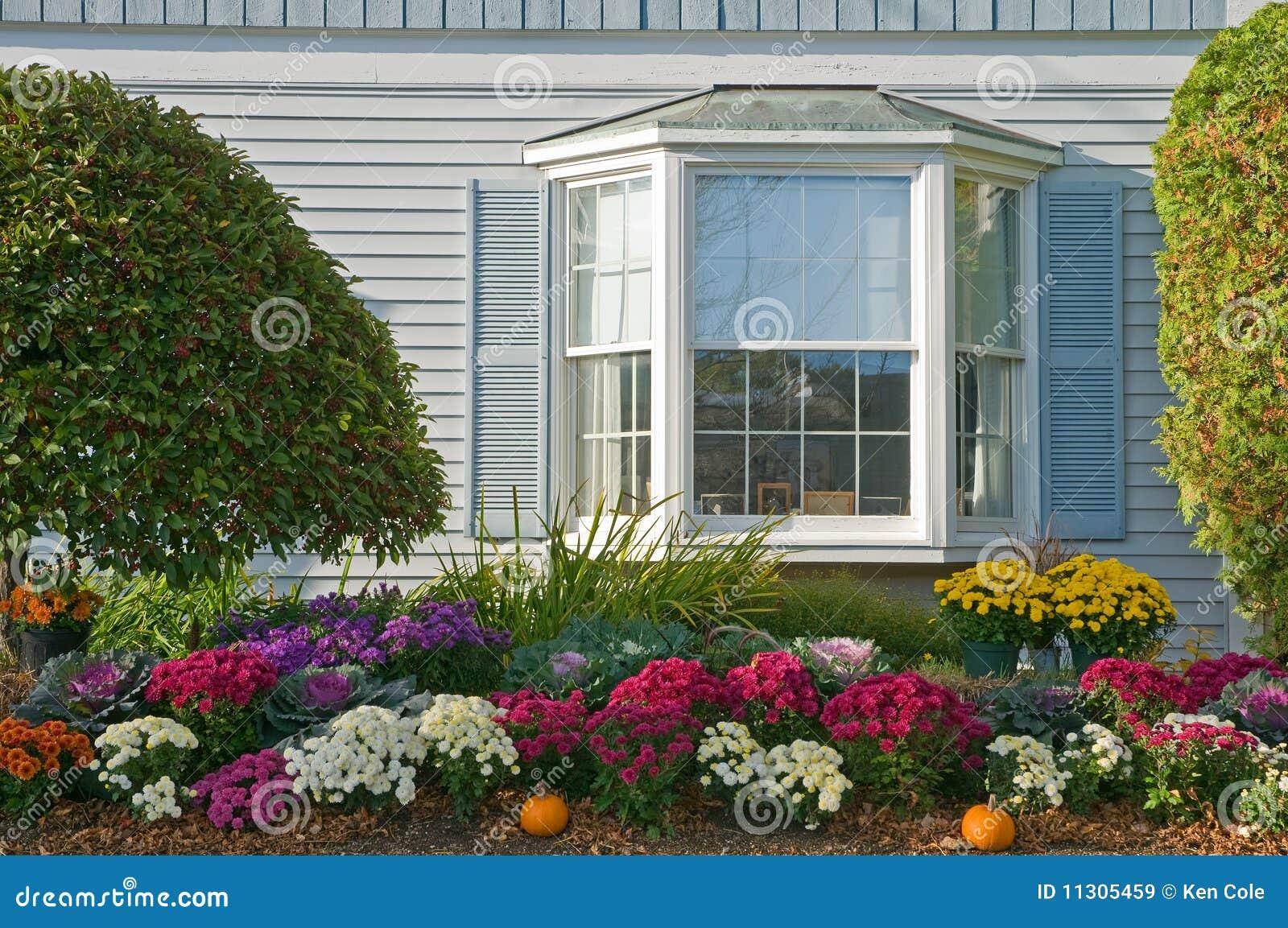 Autumn Mum Landscaping Stock Image Image Of Garden Bushes 11305459