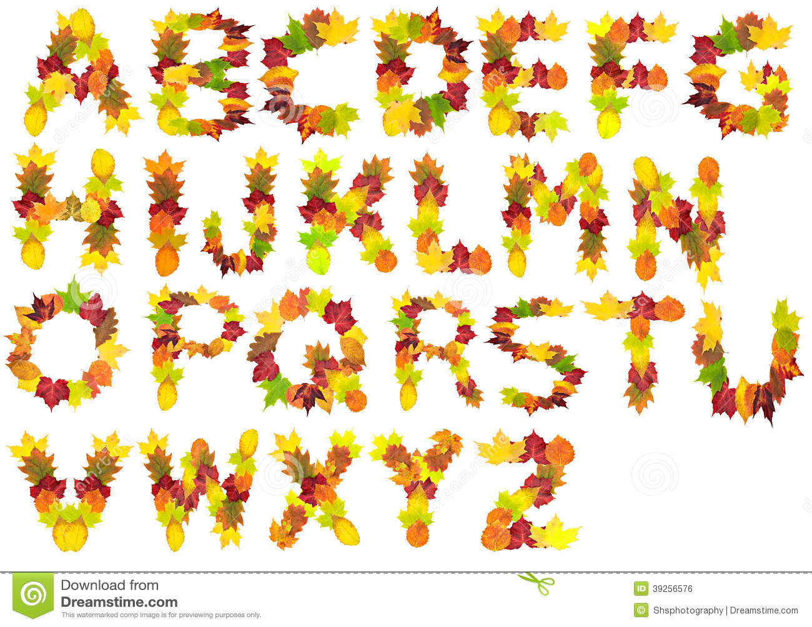 autumn leaf alphabet stock photo image of autumn  poplar birch tree vector pattern birch tree silhouette vector