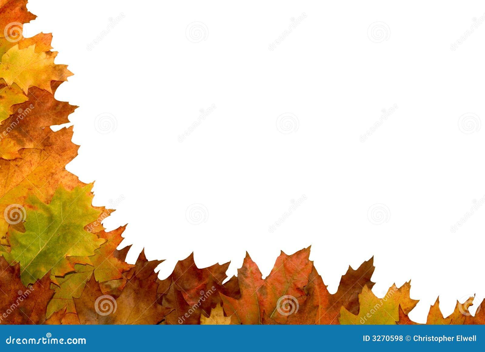 Autumn leaf border stock photo. Image of mount, autumn ...