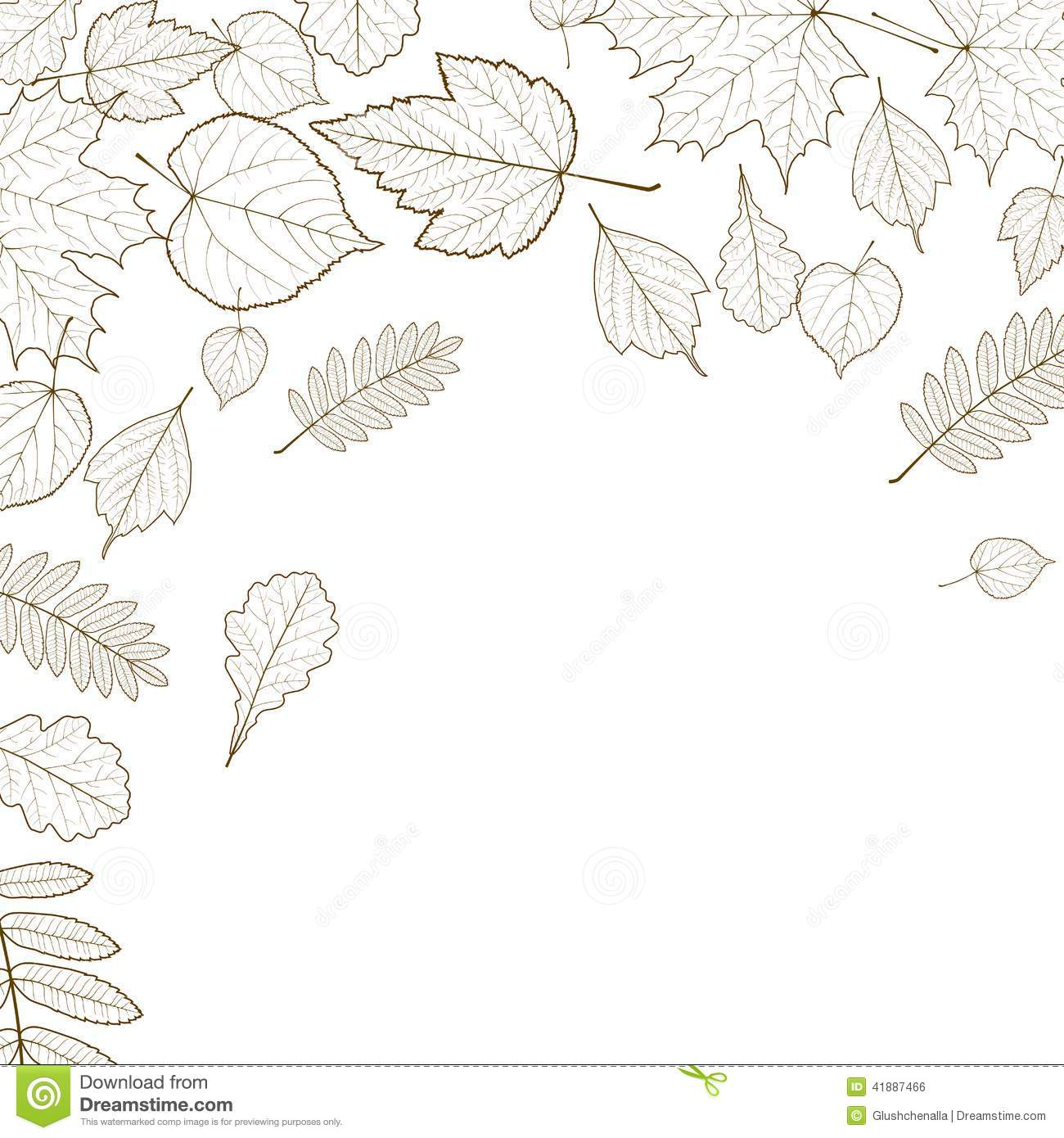 autumn leaf skeletons template stock photo image of cleft curl