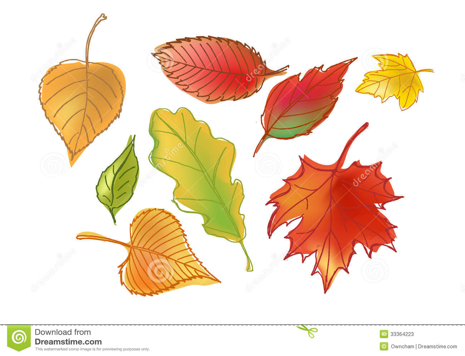 Autumn Leafs exhausto