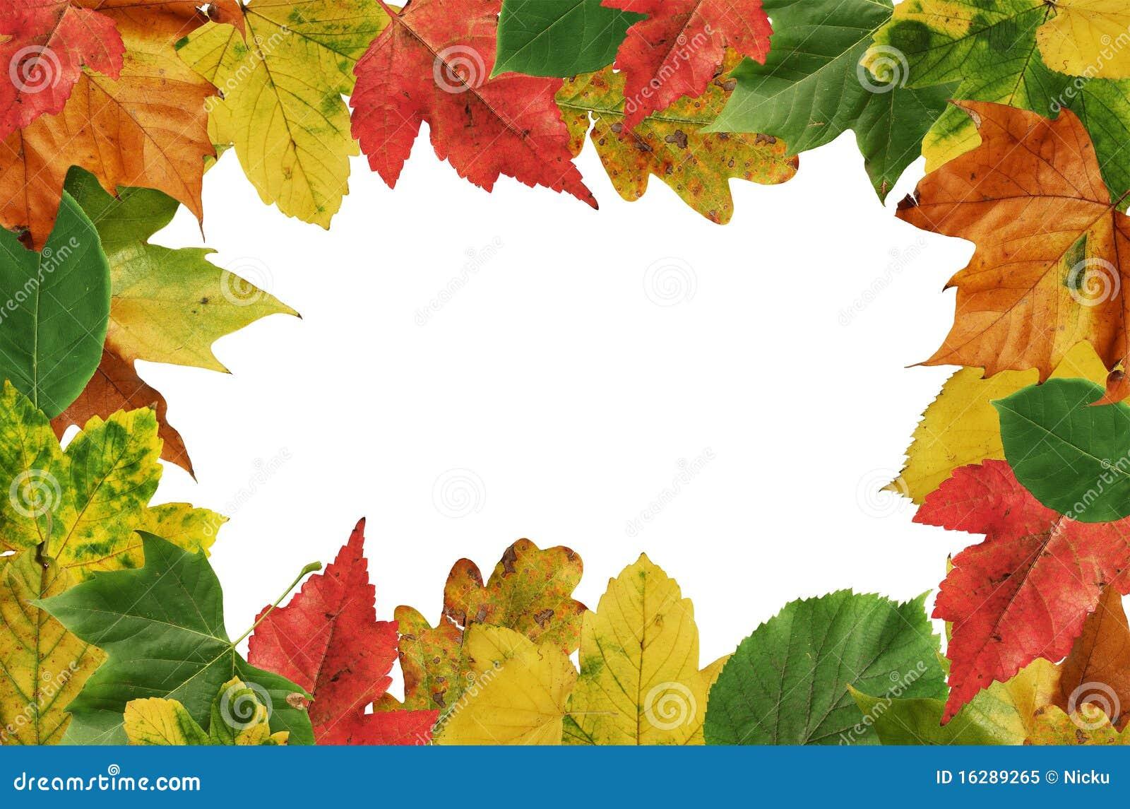 Autumn leafs frame